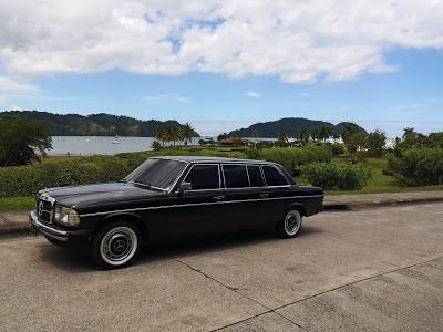 BEACH-VIEW-COSTA-RICA.-MERCEDES-300D-W123-LANG.jpg